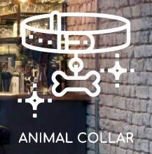 animal-collar-front-glass-design