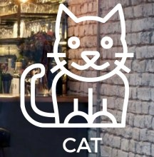 beautiful-cat-front-glass-logo
