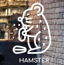 beautiful-hamster-front-glass-logo